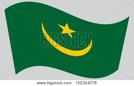 Mauritanian national official flag. African patriotic symbol banner element background. Correct colors. Flag of Mauritania waving on gray background vector