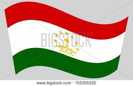 Tajikistani national official flag. Patriotic symbol banner element background. Correct colors. Flag of Tajikistan waving on gray background vector