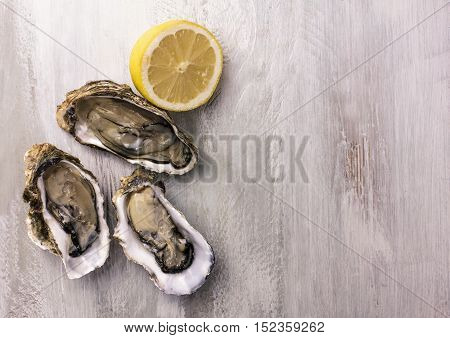 A photo of freshly opened oysters with a slice of lemon, on a wooden background texture with copyspace