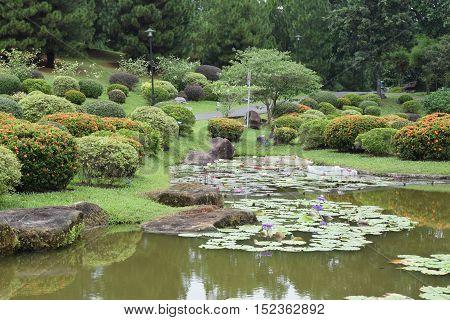 A Japanese concept garden at Singapore Japanese Garden