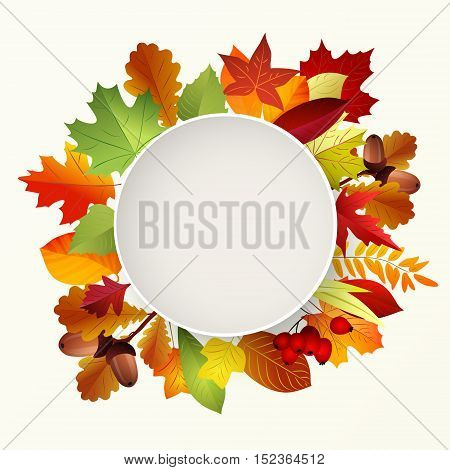 Round label with autumn leaves. Place for text . Vector illustration.