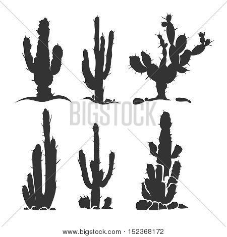 Desert cactus vector silhouette plants isolated on white. Monochrome plant illustration