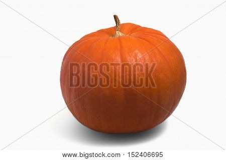 Pumkin Isolated On The White Background With Shadow.