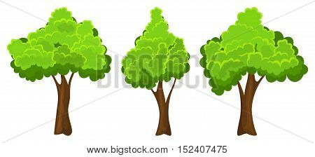 Set of three summer trees on white background