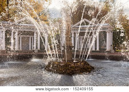 PETERHOF, SAINT PETERSBURG, RUSSIA - OCTOBER 09, 2016:  Splashes of water from a fountain in the park of Peterhof in autumn, suburb of St. Petersburg. Fountains of Peterhof are one of Russia's most famous tourist attractions