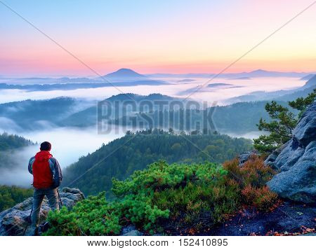 Tourist with red outdoor windcheater stands between dwarf pines on view point. Autumn hilly landscape in fog.