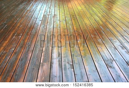 Freshly stained wooden deck showing reflection off boards.