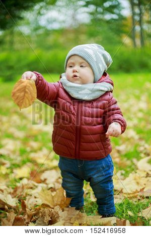 baby walking in the park on a warm autumn day
