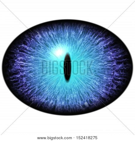 Isolated Blue Eye. Big Elliptic Eye With Striped Iris And Dark Thin Elliptic Pupil