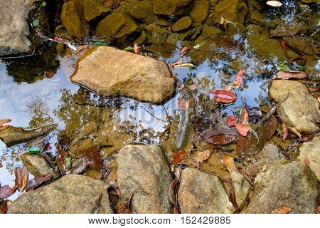 Small mountain stream with yellow stones, leaves of tropical trees on the bottom and reflection of the jungle in the water, Mu Koh Chang National Park, Chang island, Thailand. Natural background.