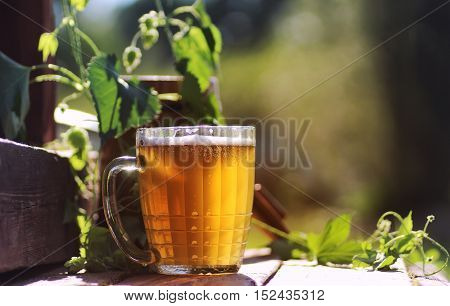 Mug microbrews on a wooden table and a branch of hops with a barrel