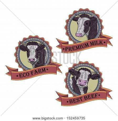 Cow calf bull cute muzzle face set collection. Vector beautiful square sign pop art color retro illustration isolated white background