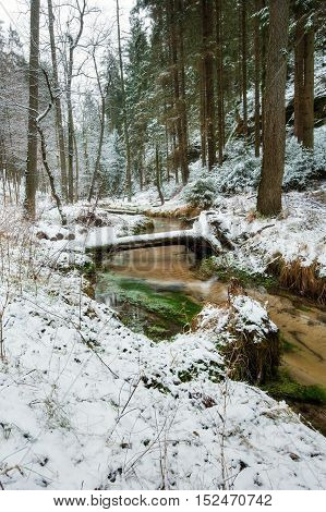 The river running through the woods with snow