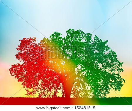 A California oak tree with a red to green gradient silhouette and yellow flare added for a colorful rainbow effect.