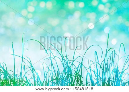 Tall grass in green silhouette with sparkling bokeh light effects in the background.