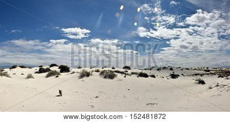 White Sands National Monument dunes in New Mexico wilderness. Panoramic high resolution view