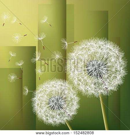 Stylish modern geometric green background with two flowers dandelions and flying fluff. Abstract trendy floral wallpaper. Vector illustration