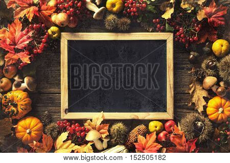 Vintage autumn border from fallen leaves and fruits on the old wooden table with copy space. Thanksgiving autumn background