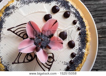 Sponge Cake Decorated With Chocolate Drops And Icing-sugar Flower