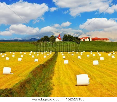 Far seen farm with red roof and a neat outbuildings. Rural field after harvest. Grass clippings packaged in white plastic bags.