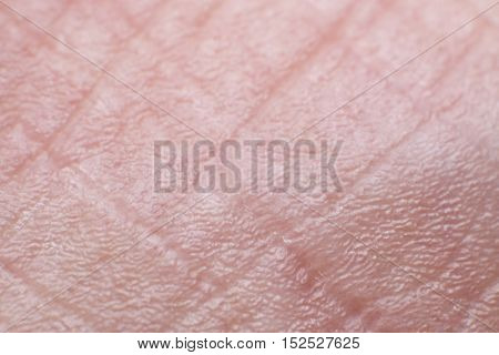 Close up of Human Skin (Side Foot)