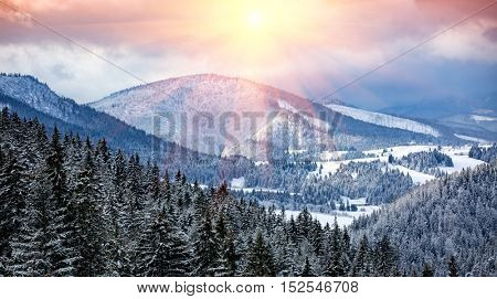 Evening winter scene in mountains