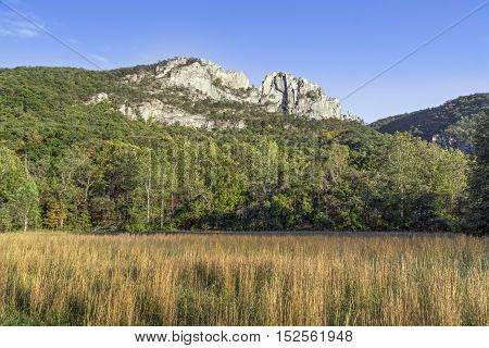 The peaks of Seneca Rocks a ridge of Tuscarora quartzite rise above Pendleton County West Virginia.