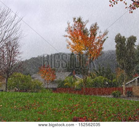 Autumn landscape with street in small town in rain
