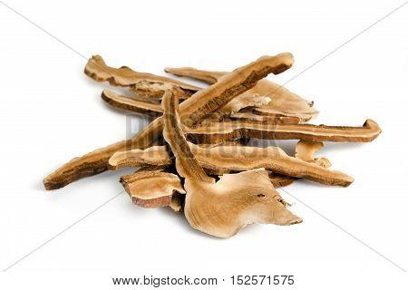Lingzhi Mushroom, Chinese Traditional Medicine, Ganoderma Lucidum (fr.) Karst, Holy Mushroom, Lacque