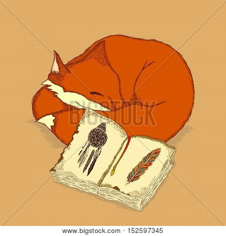 Vector cute illustration with a small sleeping fox with a shaman book in front decorated with a colorful feather. Image for animal natural boho folk Indian fantastic themes design element postcard and poster picture.