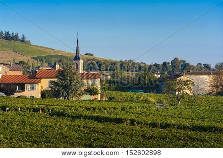 Village Of Odenas At Sunrise, Beaujolais Land, France