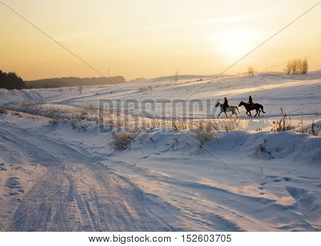 two silhouettes of horses on snow in winter, post card view at sundown