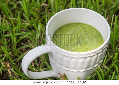 Green Smoothie Organic drink for healthy living and healing.