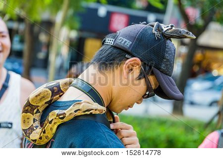 TAICHUNG TAIWAN - AUGUST 23: Man in a park with his pet lizard on his head and a snake around his neck with local people looking on 23 August 2014 in Taichung.