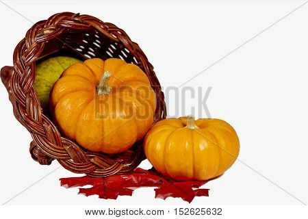 Two Mini Pumpkins With Squash In A Horn Of Plenty