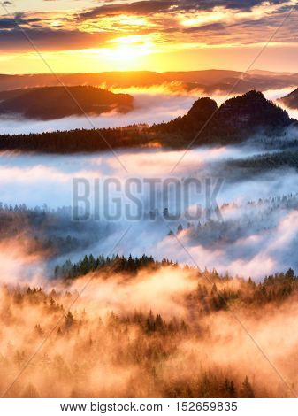 Landscape misty panorama. Fantastic dreamy sunrise on rocky mountains with view into misty valley below. Foggy clouds above forrest. View below to fairy landscape. Foggy forest hills.