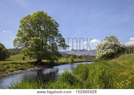 Elterwater looking towards the Langdale Pikes, The Lake District, Cumbria, England
