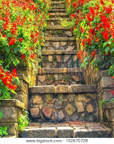 Path stairs beautifully decorated flowers in the park