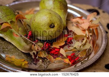 Rural vintage autumn ripe green pears, yellow leaves on a silver tray, natural fall style decorations. Natural plenteous fruits vintage background.