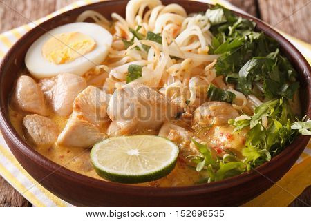 Laksa Soup With Chicken, Egg, Rice Noodles, Bean Sprouts And Coriander Close-up. Horizontal