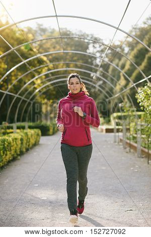 Pregnant sporty woman jogging at the park on early autumn. Gravid female athlete doing healthy exercise during pregnancy for staying in shape.