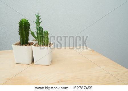 Wood table with Cactus flower in flowerpot. Flowerpot in front of concrete wall background.
