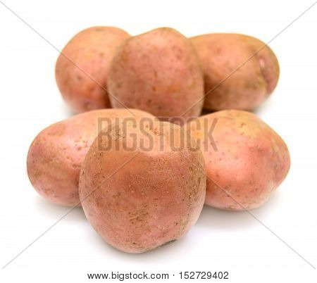 Close up of potatoes on white background. Food.
