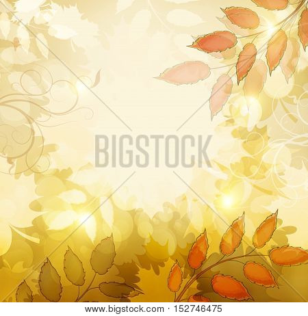 Autumn Fall Orange Background With Maple Leafs And Shine