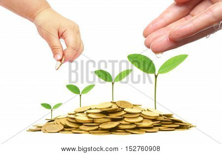 Hands of a baby and adult watering green plants growing on a pile of golden coins / Green business and investment / Business with csr and environmental concern
