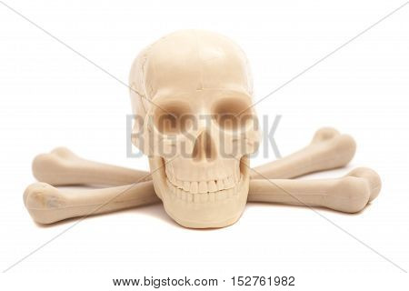 human skull with crossed bones isolated on white