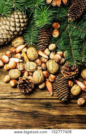 Christmas composition. Fir tree, pine tree branches, pine cones, fir cones, nuts, walnuts pine nuts hazelnuts almond. Christmas tree on wooden background