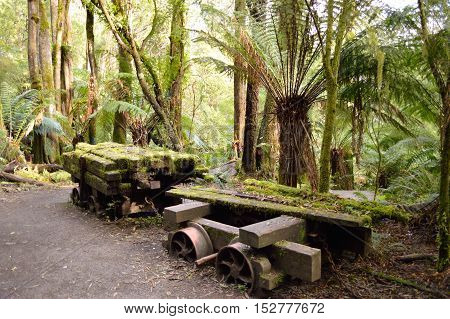 Train cart at the site of an Old timber mill in the Otways National Park, in Victoria, Australia