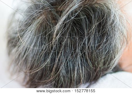 blurred of going gray in young woman shows her gray hair hair getting grey