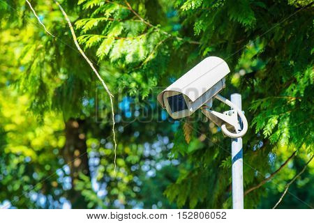 CCTV security camera for activity monitoring and surveillance in green park